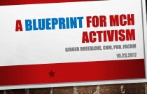 Advocacy Summit 2017: A Blueprint for MCH Activism