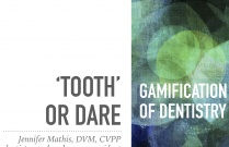 'Tooth or Dare' Dentistry Gamified
