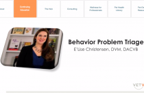 Behavior Problem Triage