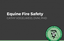 Equine Fire Safety