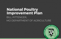National Poultry Improvement plan, Backyard Chicken Biosecurity & Husbandry