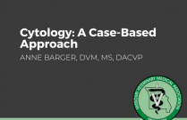 Cytology: A Case-Based Approach