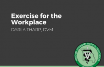 Exercise for the workplace
