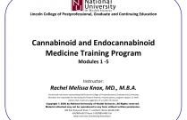 Cannabinoid and Endocannabinoid Medicine Training Program