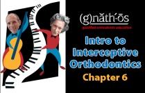 #6 Intro to Interceptive Orthodontics - Chapter 6