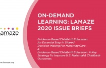 On-Demand Learning: Lamaze 2020 Issue Briefs