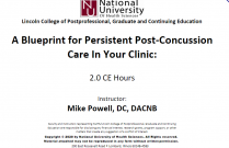 A Blueprint for Persistent Post-Concussion Care in Your Clinic