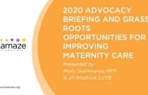 Webinar: 2020 Advocacy Briefing and Grass Roots Opportunities for Improving Maternity Care