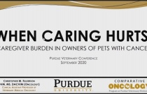When Caring Hurts: Caregiver Burden in Owners of Pets with Cancer