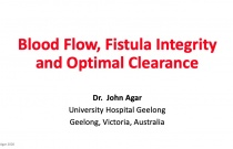 Blood Flow, Fistula Integrity and Optimal Clearance
