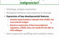 VCS 2020: Molecular and biological heterogeneity of canine lymphoma