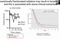 VCS 2020: Targeted Radionuclide Therapy and the Interface between Radiation and Immunotherapy