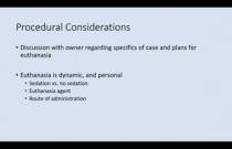 VCS 2020: Euthanaisa and natural death