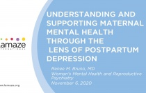 Webinar: Understanding and Supporting Maternal Mental Health through the Lens of Postpartum Depression