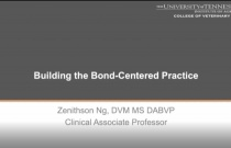 Building the Bond Centered Practice