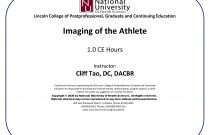 Imaging of the Athlete