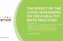 Webinar: The Effect of the COVID-19 Pandemic on the Six Healthy Birth Practices