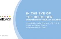 In the Eye of the Beholder: Understanding Trauma in Childbirth