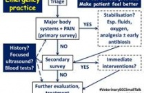 Approach to the Emergency Patient (S Jasani, 2014)
