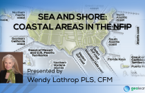 Sea and Shore: Coastal Areas in the NFIP