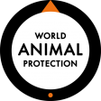 Dr David Main, World Animal Protection
