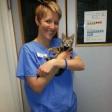 Dr Elise Robertson BS BVetMed MACVSc(Feline) DipABVP(Feline) MRCVS